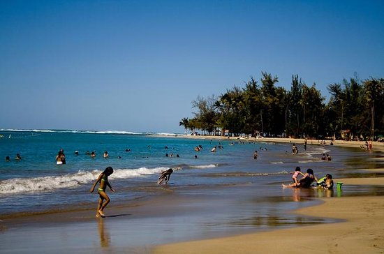 Full-Day Yunque Rainforest and Luquillo...