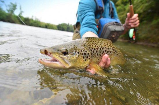 Excursão de pesca com mosca de meio...