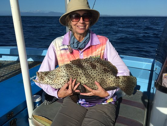 Cooktown, Australia: Many varieties of fish to catch!