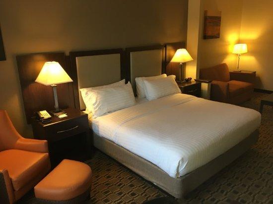 Albemarle, Carolina del Norte: King Executive Room is spacious open floor plan.
