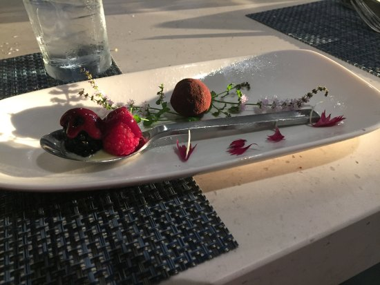 Lenexa, KS: Lavender truffle with berries and cream