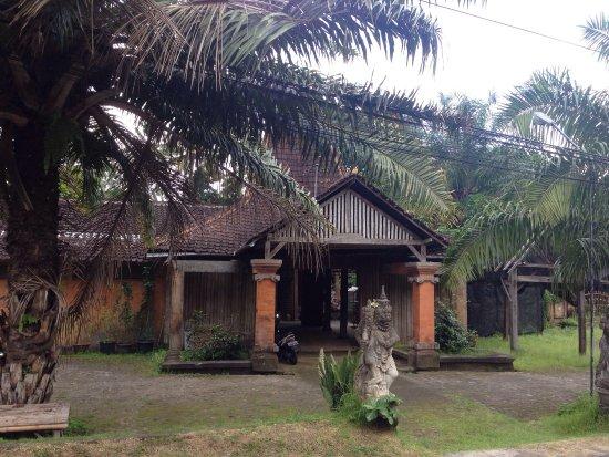 Botanic Garden Ubud: photo3.jpg