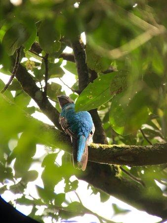 Reserva Curi-Cancha: photo1.jpg