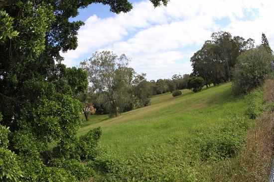 Raymond Terrace, Austrália: reserves