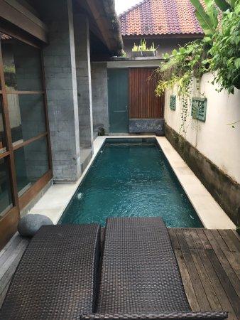 Luwak Ubud Villas: photo1.jpg