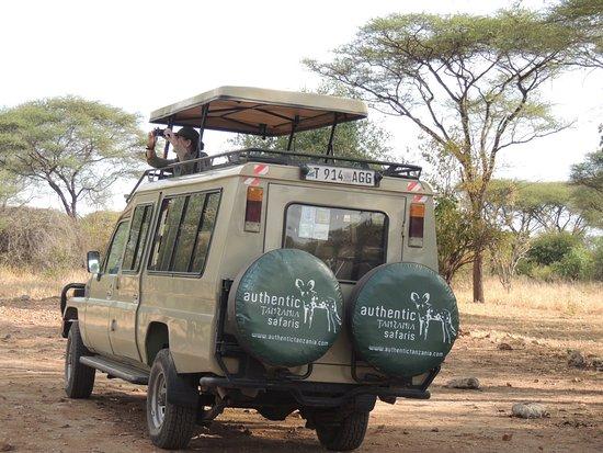 Tarangire National Park, Tanzania: Ready for a safari
