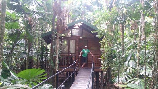 Diwan, Australien: Daintree Wilderness Lodge