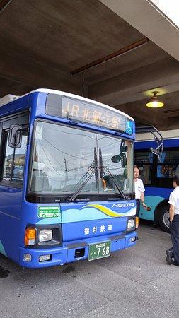 Echizen-cho, Japan: お店のすぐ隣がバス停留所になってます。