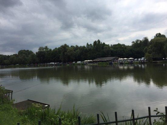 Aalst, België: photo4.jpg