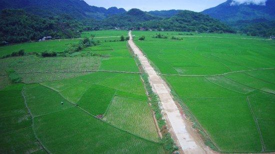 Mai Chau, Wietnam: green rice fields