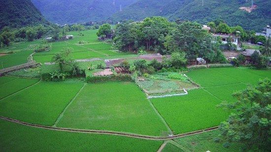 Mai Chau, Wietnam: cvbndf