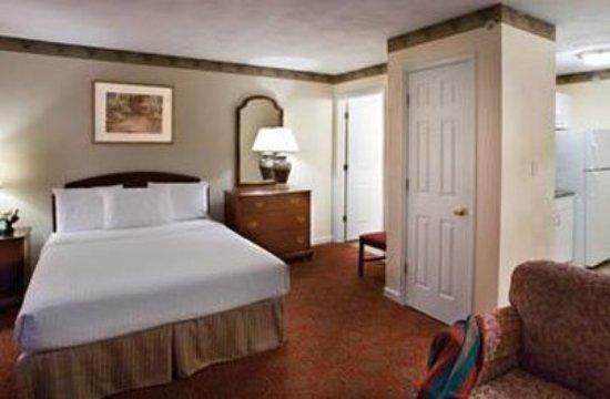 Luxbury Inn & Suites: Studio Suite
