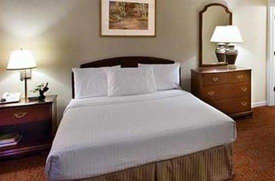 Luxbury Inn & Suites: Single Suite