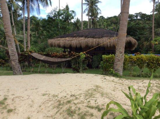 Picture Of Las Cabanas Beach Resort