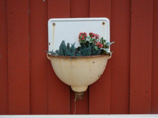 Мушеэн, Норвегия: Roses