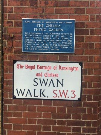 Chelsea Physic Garden: photo0.jpg