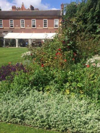 Chelsea Physic Garden: photo1.jpg