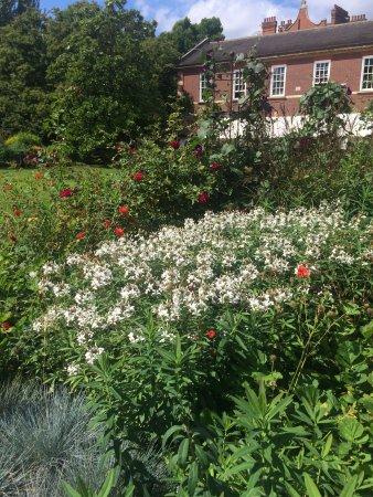 Chelsea Physic Garden: photo2.jpg