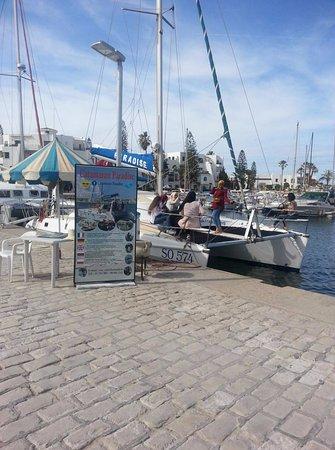 Tunis Governorate, Tunisia: В порту стоят яхты, можно купить билет и прогуляться по островам...