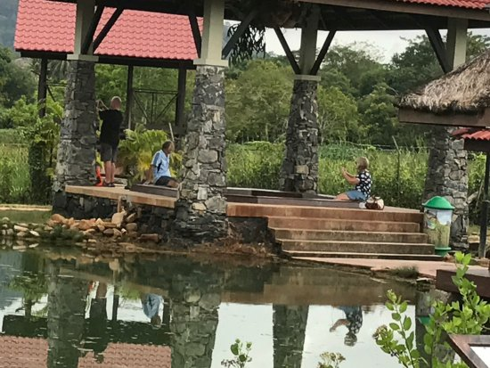 Ayer Hangat Village: Hot spring