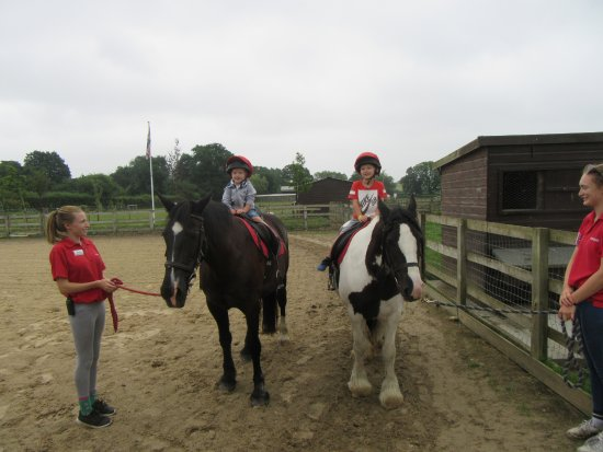Wisborough Green, UK: Grandsons loved their pony ride.