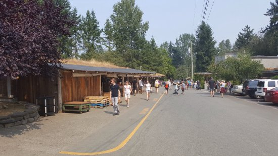 The Old Country Market Coombs British Columbia Top