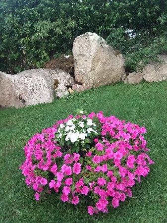 Cala di Volpe, Ιταλία: Elegante giardino dell'albergo. Possibilit' di gite in barca dell'albergo disponibile alla recep
