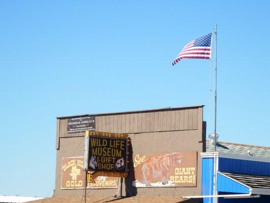 Wall, Dakota del Sur: Patriotic Store