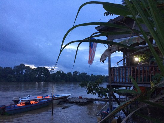 sukau river homestay warung for having meals facing the kinabtangan river .
