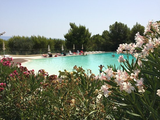 Molinella, Ιταλία: photo0.jpg