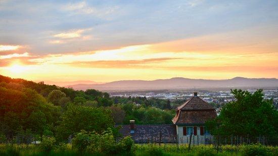 Merzhausen, Almanya: Sonnenuntergang mit Blick auf die Vogesen