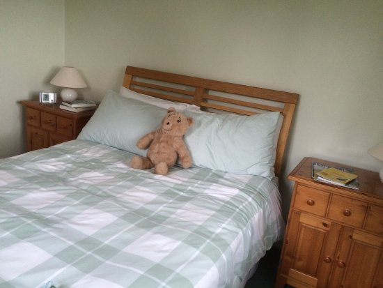 Winterborne Zelston, UK: Humphrey relaxing on the very comfortable bed.