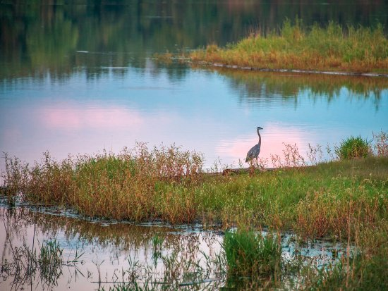 Δυτικό Des Moines, Αϊόβα: Bid on the lake at sunset