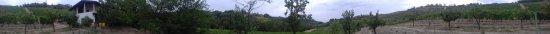 Costa Vescovato, Włochy: Panorama a 360°