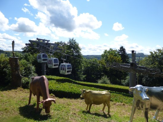 Matlock Bath, UK: This photo features the cable car gondolas and the cow statues
