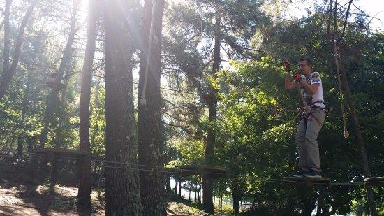 Province of Pontevedra, Spain: Lianas antes de llegar a la tirolina