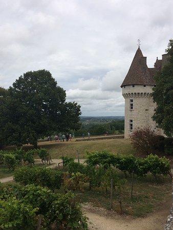 Monbazillac, Γαλλία: photo2.jpg