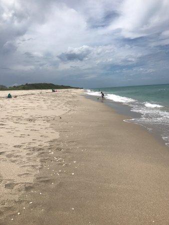 John D. MacArthur Beach State Park : photo0.jpg