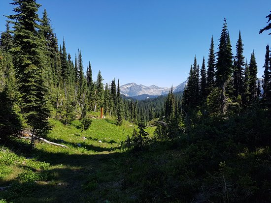 ‪‪Mount Revelstoke National Park‬: Eva Lake Hike - Mount Revelstoke Park‬