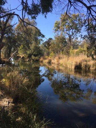 Ballandean, Australia: photo2.jpg