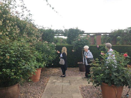 Wolverhampton, UK: gardens 7