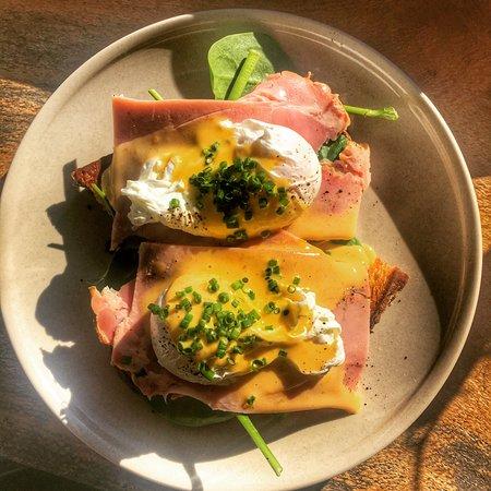 Cooroy, Australia: eggs benedict