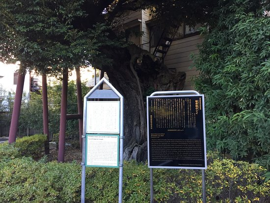 Arakawa Resmi