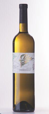 Visnjan, Croatia: Chardonnay