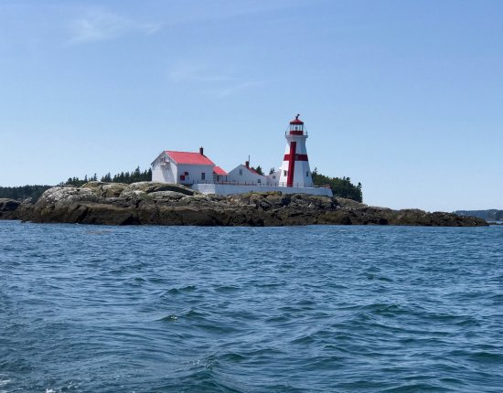 Island Cruises Whalewatching: East Quoddy Lighthouse