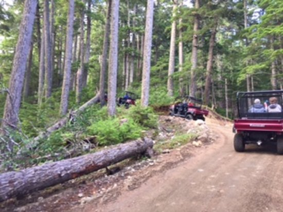 Haines, AK: view of the trail from the 4x4