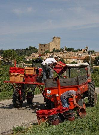 Bilde fra Chateauneuf-du-Pape