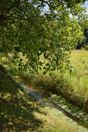 Hambye, ฝรั่งเศส: Klostergarten