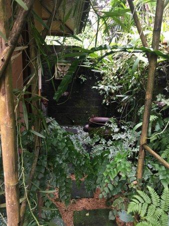 Sarinbuana Eco Lodge: photo1.jpg