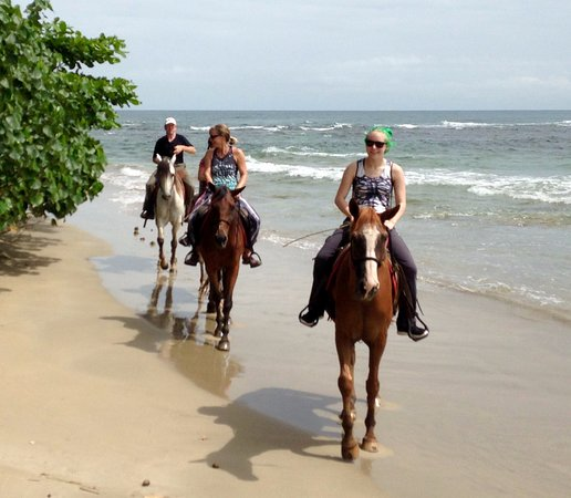 Cocles, Costa Rica: So much fun and beautiful beaches!!!